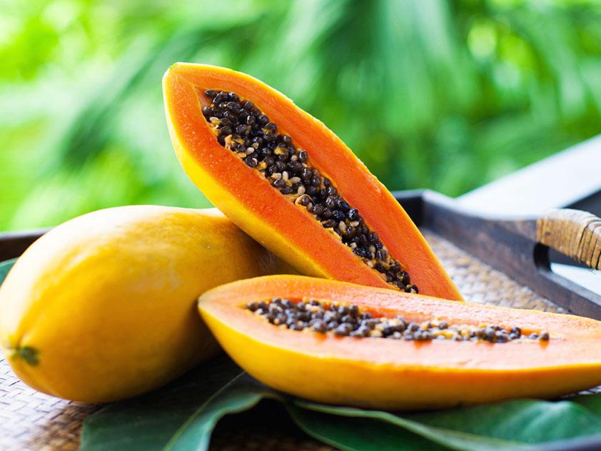Папайя, или Дынное дерево - Carica papaya, папайя фото
